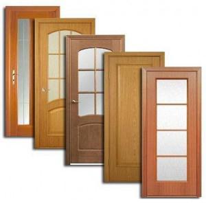 Двери, дверные блоки Пензы